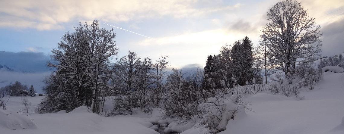 Mondschein-Schneeschuhtour
