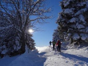 Schneeschuh_Pulverschnee
