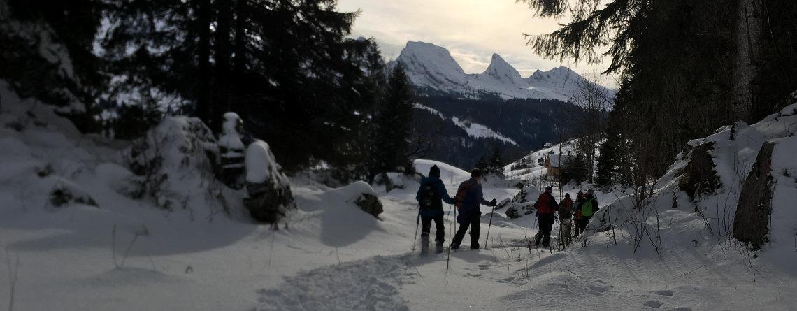 Abend-Schneeschuhwanderung Toggenburg